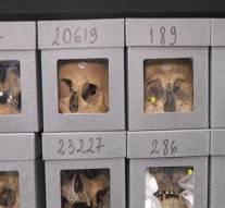 Les crânes de résistants algériens à Paris, preuves d'une sauvagerie qui ne va pas sans rappeler celle de Daech !