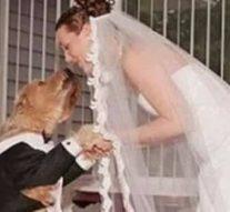 Une britannique épouse son chien.