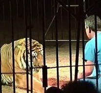 L'un des plus grands dompteurs de cirque au monde est assassiné par ses quatre tigres