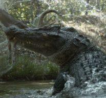 Un garçon de 10 ans mangé vivant par un crocodile devant sa famille impuissante