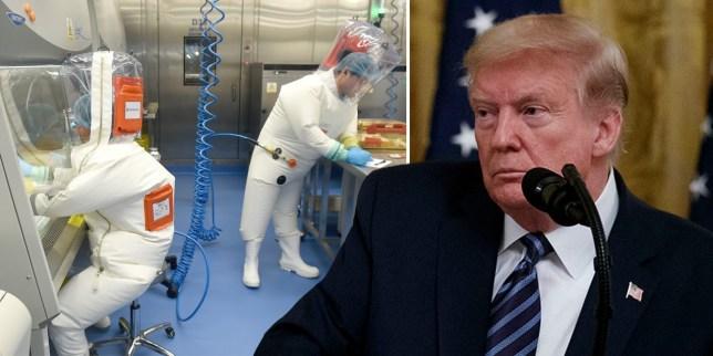 Coronavirus/ «Les allégations américaines contre la Chine est une tentative de détourner l'attention quant à la défaillance du système de santé américain», dit le ministère allemand de la défense